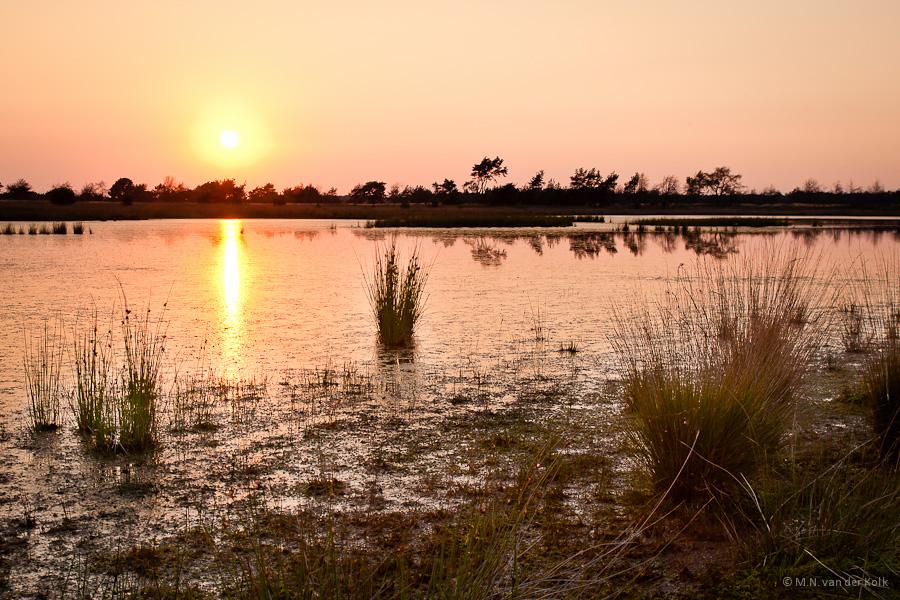 Strabrechtse Heide zonsondergang